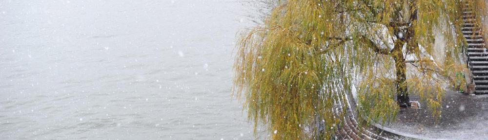EFC Adler München
